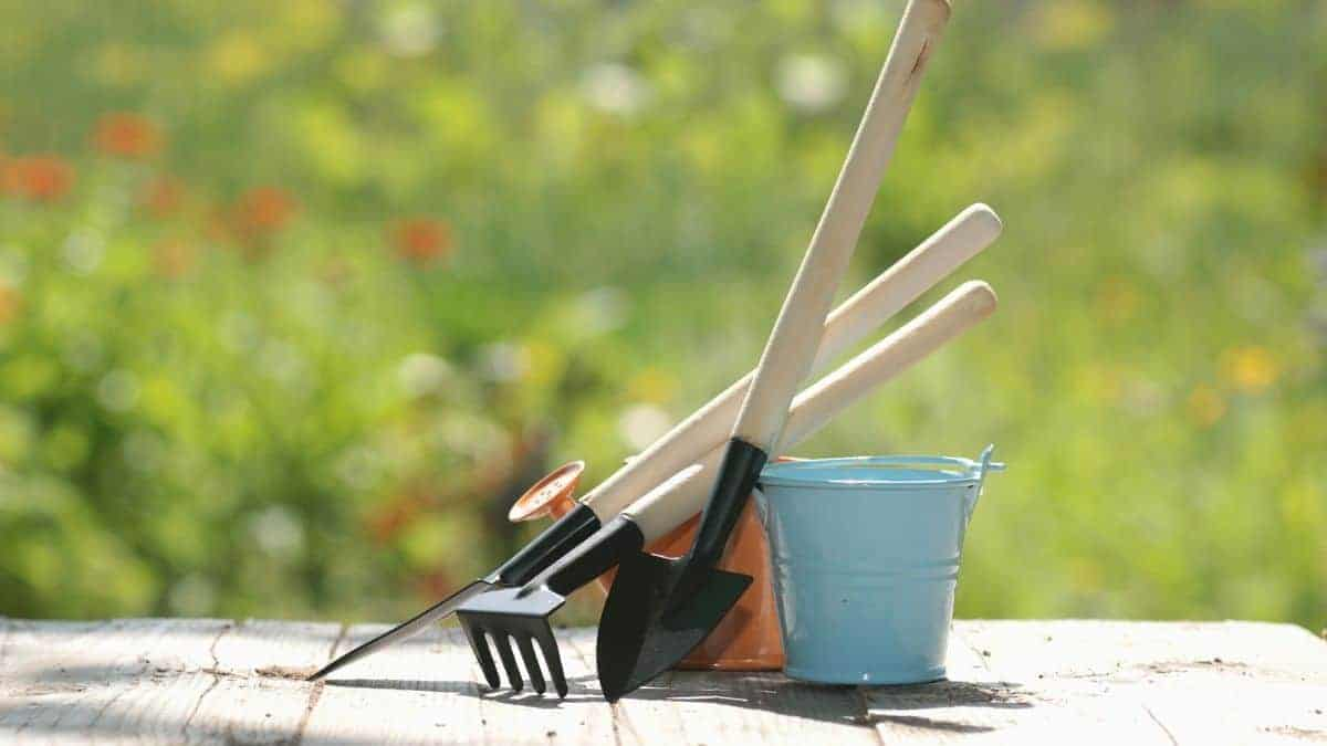 How to Maintain Garden Tools